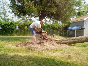 Removing the stump
