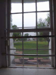 View thru the new window.